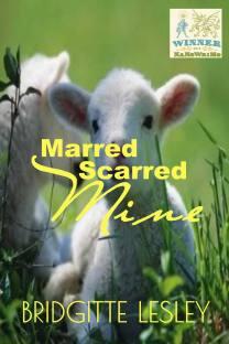 Marred Scarred Mine